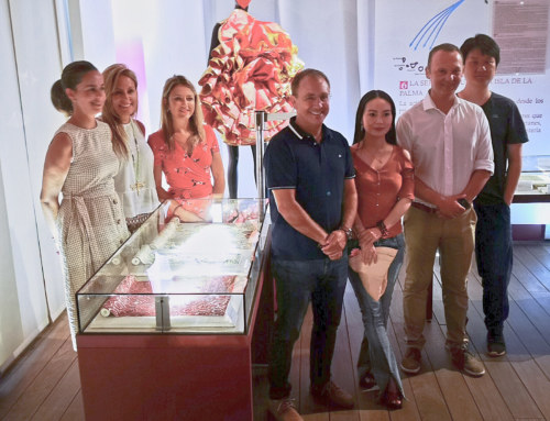 La Seda, principal atractivo de El Paso para los representantes asiáticos de la Casa de San Mao Desde El Paso realizarán acciones para que este tipo de turismo asiático, encuentre en nuestro municipio un reclamo cultural.