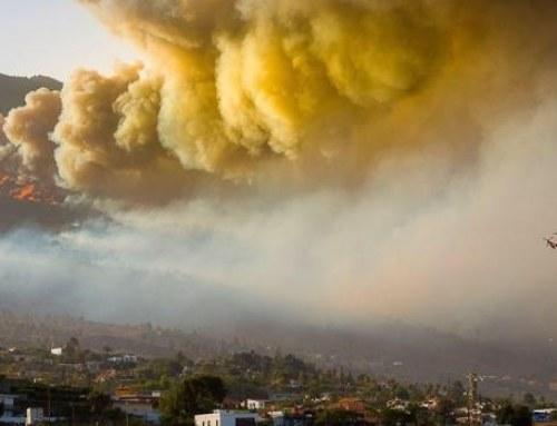 """El Paso inicia la elaboración del """"Plan de Acción Local por Incendios Forestales"""""""