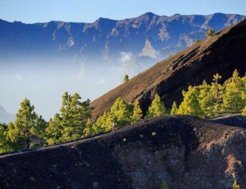 La Isla de La Palma, epicentro del Trail Running Nacional